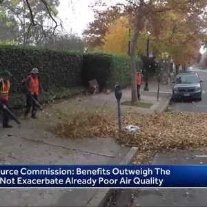 Davis will restrict use of leaf blowers when air quality is bad