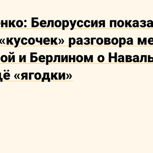 """Lukashenko: Belarus showed only a """"piece"""" of the conversation between Warsaw and Berlin about Navalny. There are also """"berries"""" - News on TJ"""
