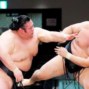Sumo: Ozeki Takakeisho bounces back, in 7-way tie at Autumn meet