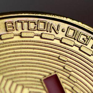 Major Tesla Investor Brands Bitcoin A 'Contender For The First Global Digital Money'