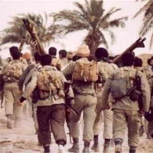 Iran-Iraq war teaches country to stand on its own foot: Cmdr.